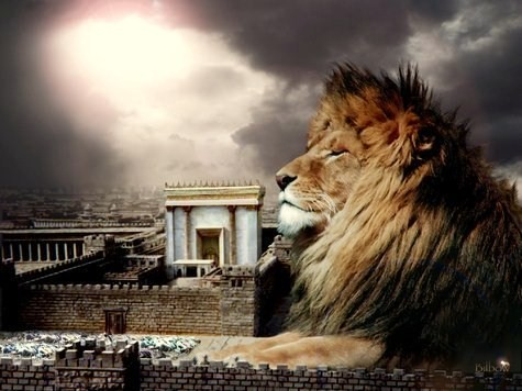 lion of judah watching jerusalem
